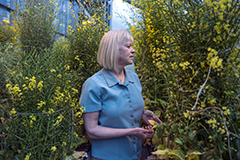 Hannah Carey, Ph.D, Director of the UW-Biotron walks between a row of plants growing within their outdoor greenhouse on the Biotron Laboratory property.